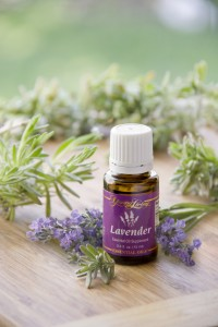 lavender for sunburn