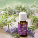 The Adventure of Learning to Use Essential Oils Effectively Part 2