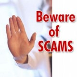 Young Living Business: Scam or Financial Security?